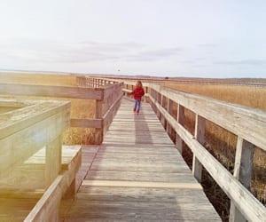 AmandaHardingDonnelly-Southampton-NewYork-USA