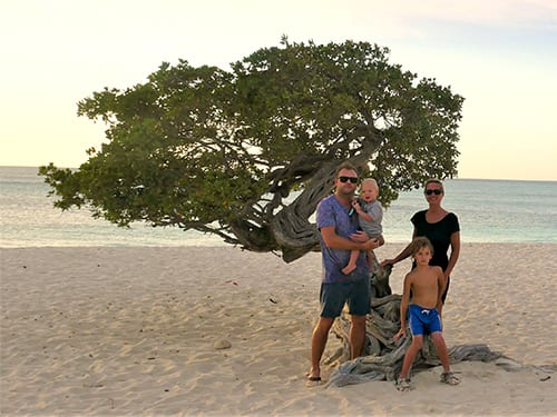 Aruba_didi-tree-family_500x375