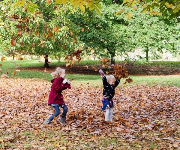kids playing with the leaves in fall