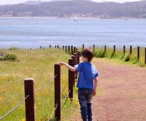 california-san-francisco-family-sightseeing-trip-1000