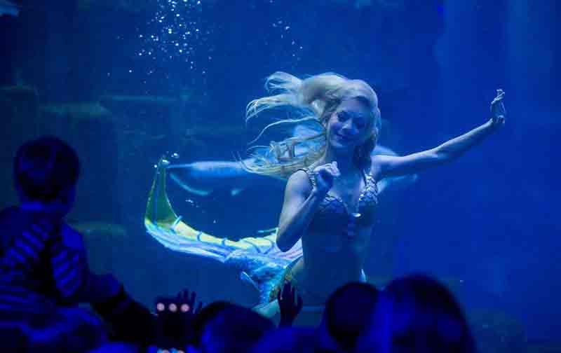 Mermaid in Paris Aquarium. 5-day itinerary in Paris with kids